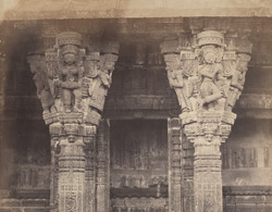 Columns on the West face of the Chaumukh, North end [Satrunjaya].